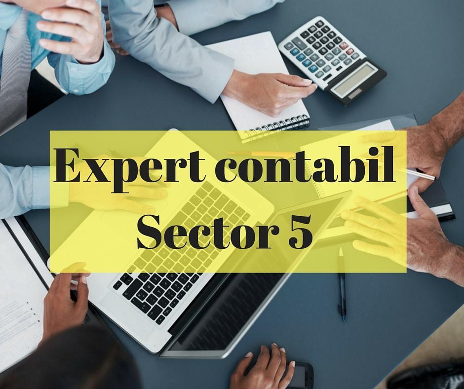 Expert contabil Sector 5